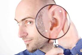 Two Ears One Mouth IT Consulting